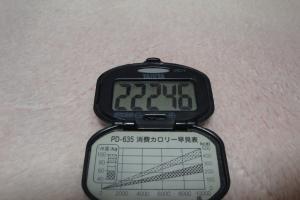 110226-060万歩計(縮小)