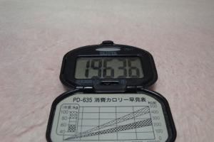 110305-060万歩計(縮小)