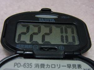 110313-040万歩計(縮小)