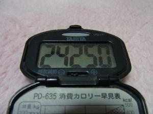 110319-060万歩計(縮小)