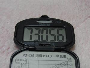 110321-040万歩計(縮小)