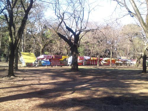 110326-001大宮公園(縮小)