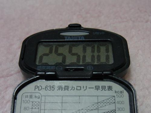 110326-050万歩計(縮小)