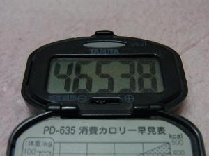 110327-060万歩計(縮小)