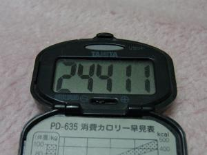 110402-050万歩計(縮小)