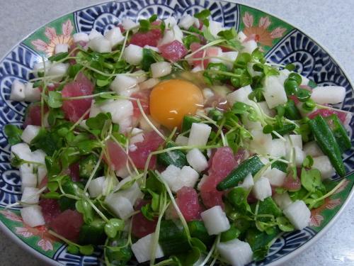 110409-020まぐろと長芋とおくらの三色タルタル(縮小)