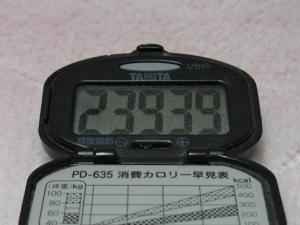 110409-050万歩計(縮小)