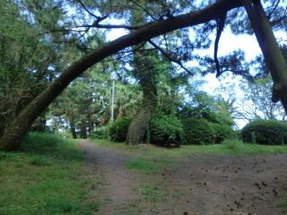 長崎鼻公園