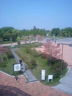 舎人公園①.jpg