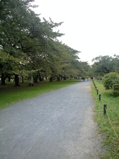 081019_小石川植物園①.jpg