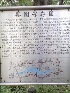 081019_薬園保存園看板.jpg