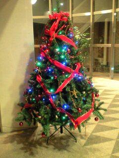 081212_1711~ラスティアクリスマスツリー.jpg