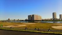 江戸川河川敷4