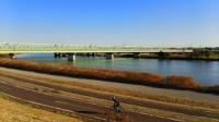 江戸川河川敷3