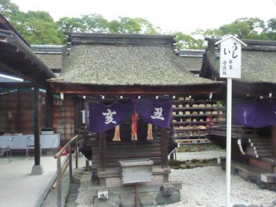 kyoutonara 133