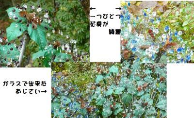 a_20101123213139.jpg