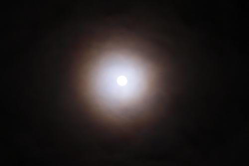 DSC04300-1.jpg