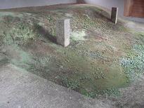 樋口地区・上下断層