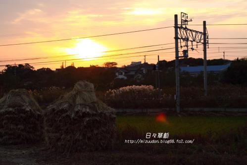 2012_11_23_9471 のコピー