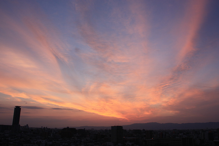 120615朝陽夕陽 (4)