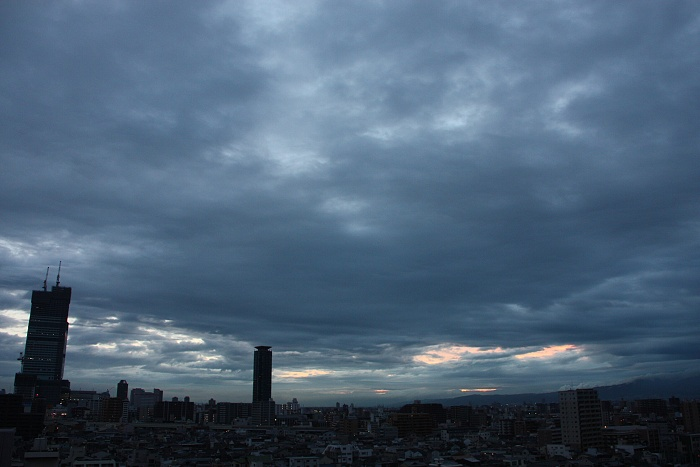 120621雨も (1)