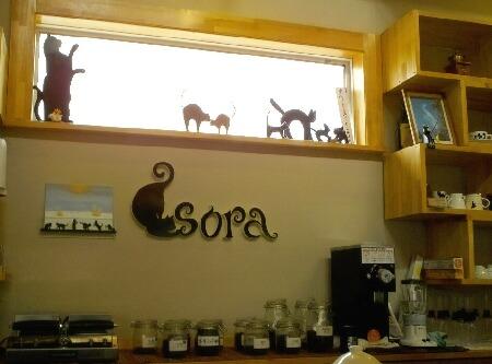 SORA-1.jpg