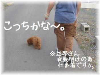 コピー ~ IMG_2664