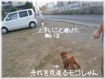 コピー ~ IMG_2762