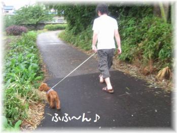 コピー ~ IMG_5300