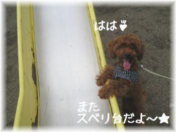 コピー ~ IMG_5445
