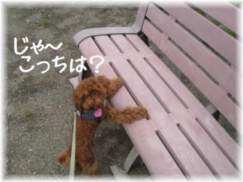 コピー ~ IMG_5441