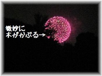 コピー ~ IMG_5585