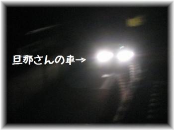 コピー ~ IMG_5627