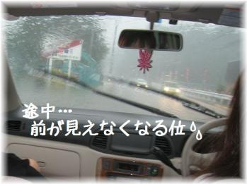 コピー ~ IMG_6173