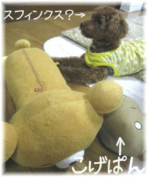 コピー ~ IMG_6210