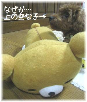 コピー ~ IMG_6212