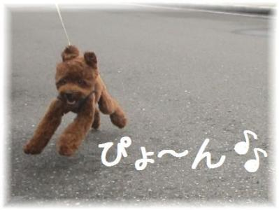 コピー ~ IMG_0878