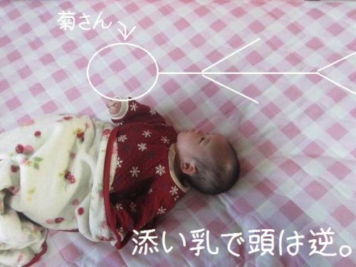 アクロバット授乳
