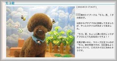 HP_20120402121221.jpg
