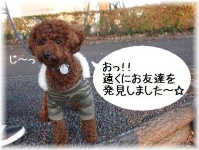 IMG_4008.jpg