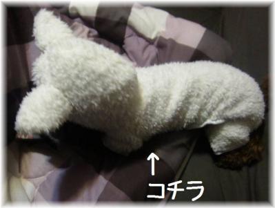 IMG_4648_20111212105245.jpg