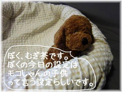 IMG_4901.jpg