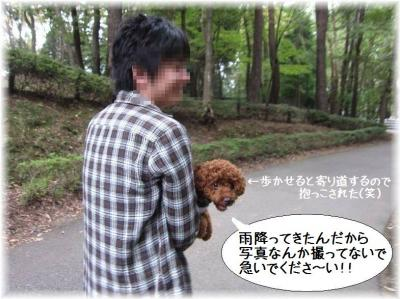 IMG_6230.jpg