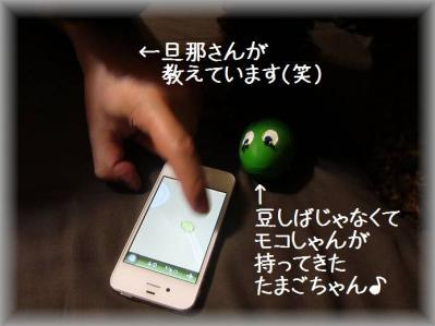 IMG_6883_20120401002602.jpg