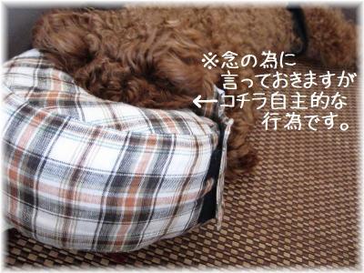 IMG_7776.jpg