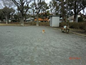 002_convert_20120304090850.jpg