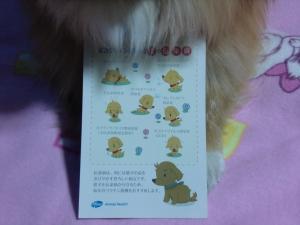 004_convert_20120216084345.jpg