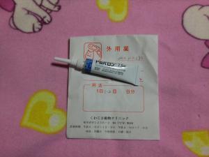 017_convert_20121117095454.jpg
