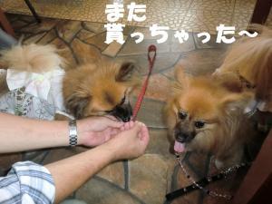 006・阪さ繝。繝ウ繝・convert_20111018215831