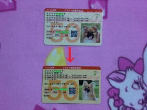 019繝シ菫ョ豁」_convert_20120105145527
